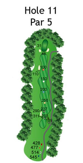 Layout of The Dream Hole 11