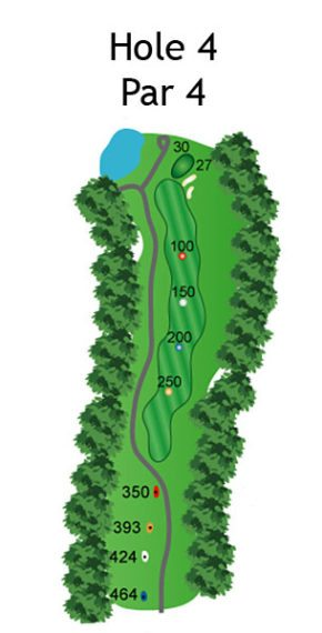 Layout of The Dream Hole 4